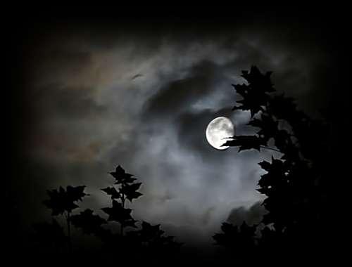 Risultato immagine per pensieri nella notte